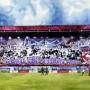 Austria Wien Fans 2